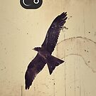 Soaring Bird by oddoutlet