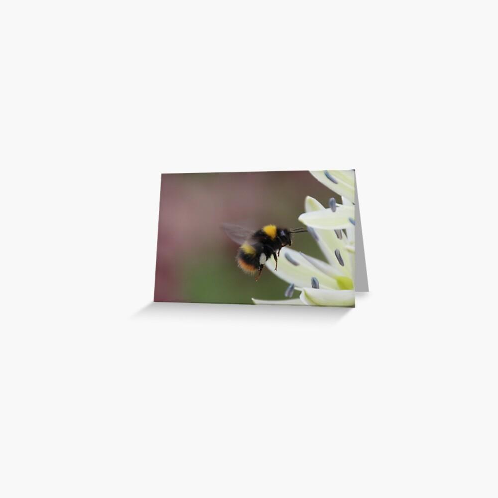 Bee in flight Greeting Card
