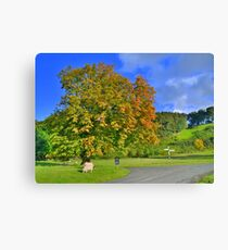 Yorkshire: The Colours of Autumn Canvas Print