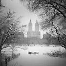Central Park - Winter Wonderland by Vivienne Gucwa