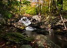 Tartia Engel Falls by Yelena Rozov