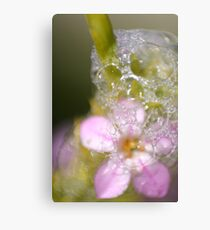 Floral Foam Canvas Print