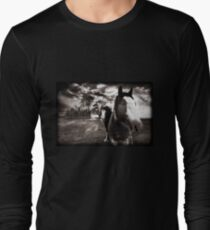 Horses 1 T shirt Long Sleeve T-Shirt