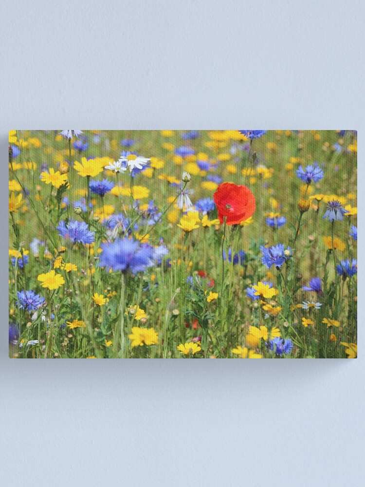 Alternate view of Wildflowers Canvas Print