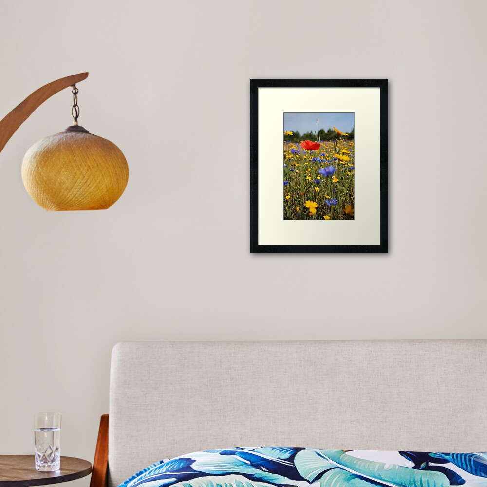 Wildflower meadow Framed Art Print