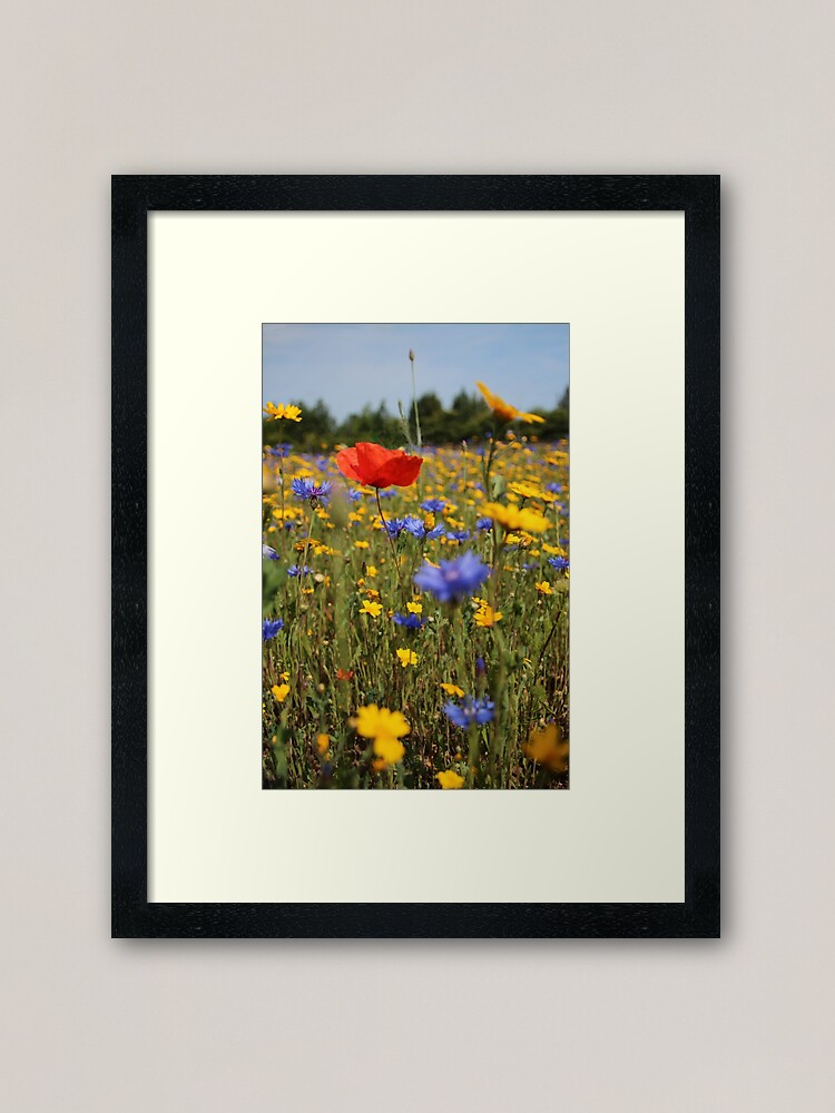 Alternate view of Wildflower meadow Framed Art Print