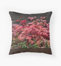 Bougainvillea growing up wire over a wall Throw Pillow