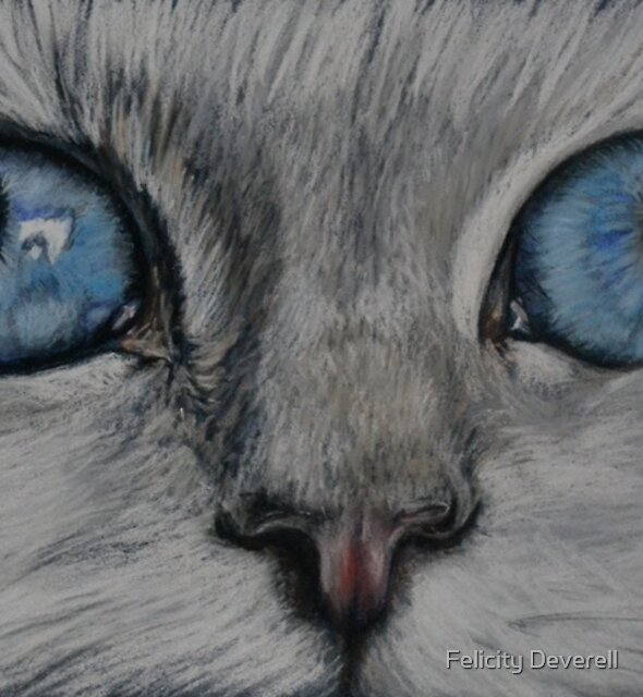 Cat's Eyes by Felicity Deverell