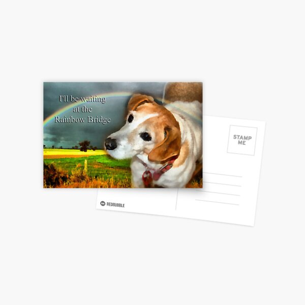 Sympathy Card For Loss Of Pet Dog Postcard