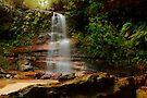 Federal Falls, New South Wales. by Andy Newman