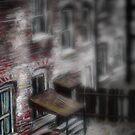 Altered, Backyard 29 Hanbury Street by Cameron Hampton