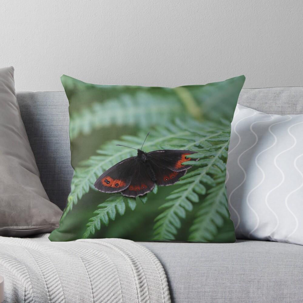 Scotch Argus butterfly Throw Pillow