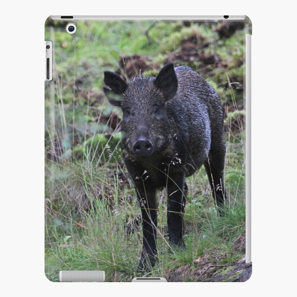 Wild boar iPad Case & Skin
