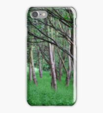 Woodland Glade iPhone Case/Skin