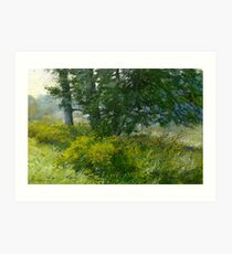 Afternoon. Cootes Paradise. Art Print