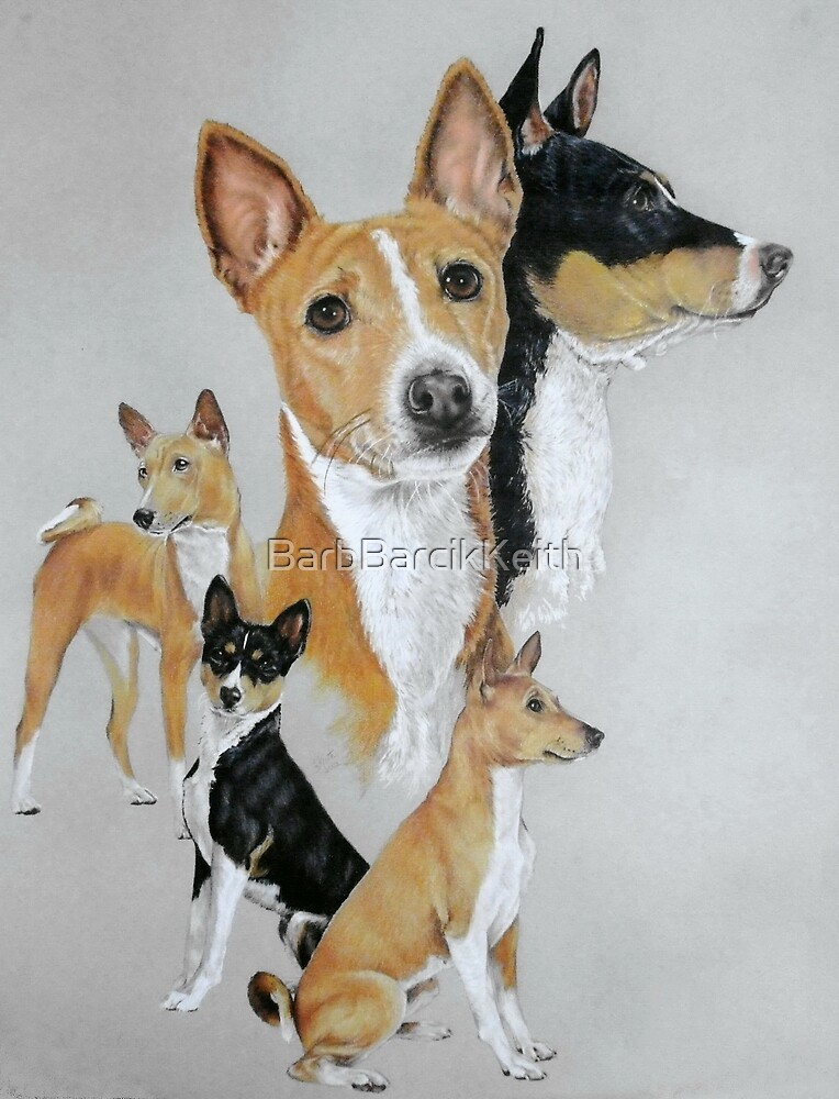 Basenji by BarbBarcikKeith