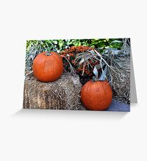 Harvest Pumpkins  Greeting Card