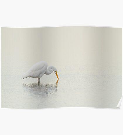 An Egret Finds Himself Poster