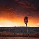 STOP - Salt Creek Mine Site by Chris Paddick