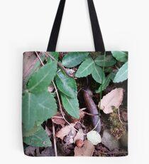 Hidden in the Leaves Tote Bag