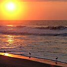 Sunrise at Ocean Isle by Kelly Nowak