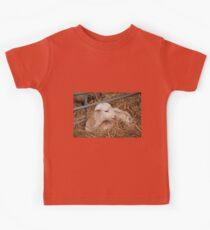Young Lamb Kids Clothes