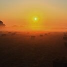 Bales at sunrise by Keith McGuinness