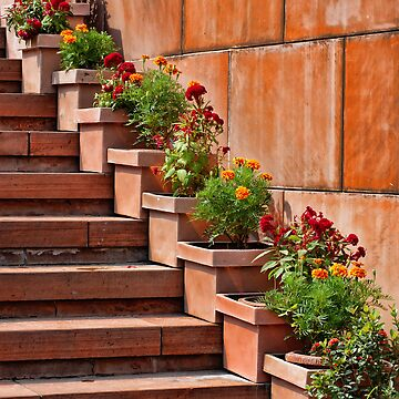 Lotus Temple Stairs by HappyDesigner