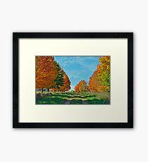 Maple Tree Lane Framed Print