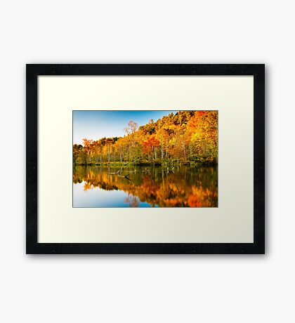 Reflections of Fall 2 Framed Print