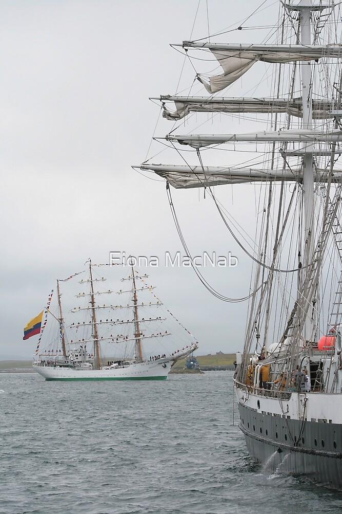 Setting Sail by Fiona MacNab