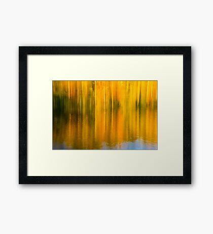 Autumn Abstraction Framed Print