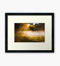 On a Beam of Light 2 Framed Print