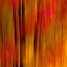 Splash of Fall  by Daniel  Parent