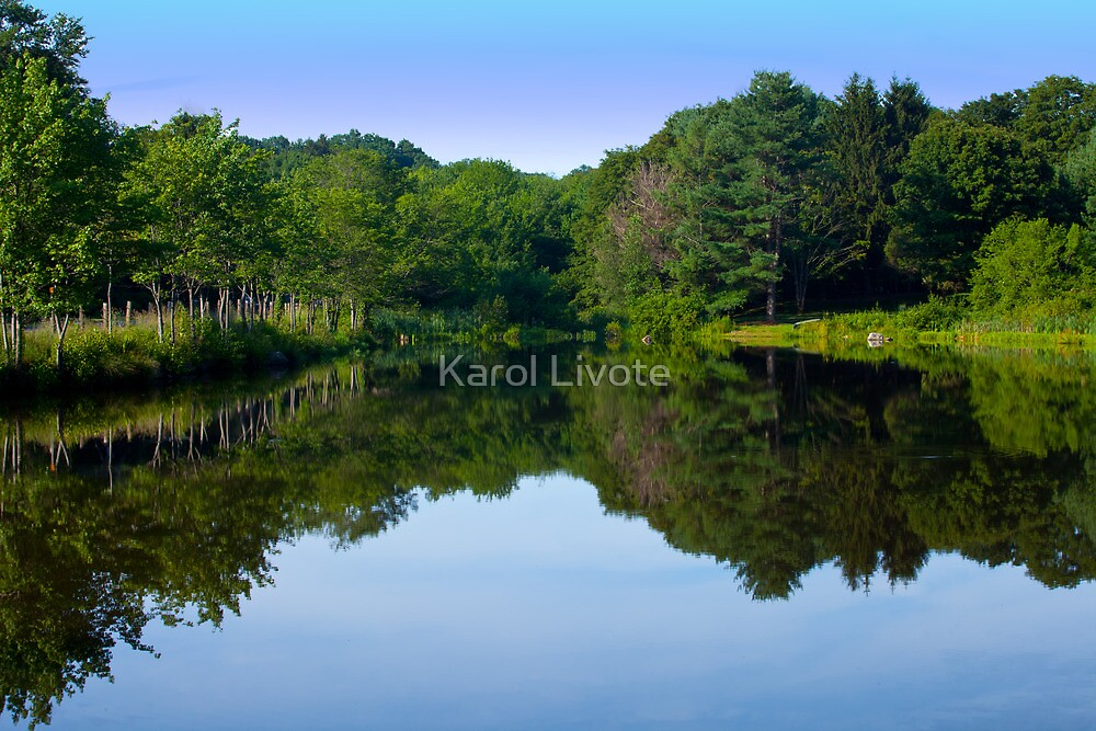 The Greens of Summer by Karol Livote