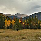 Rockies in the Fall by Colleen Drew