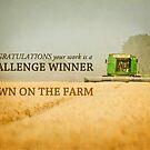 Down on the Farm- Challenge Winner Banner by vividpeach