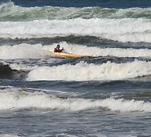Surf's Up! by Fiona MacNab