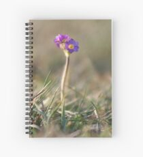 Primula Scotica Spiral Notebook