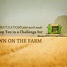Down on the Farm- Top Ten Banner by vividpeach