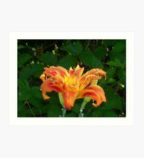 Lilies in Mississipi Art Print