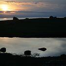 Eshaness sunset by Fiona MacNab