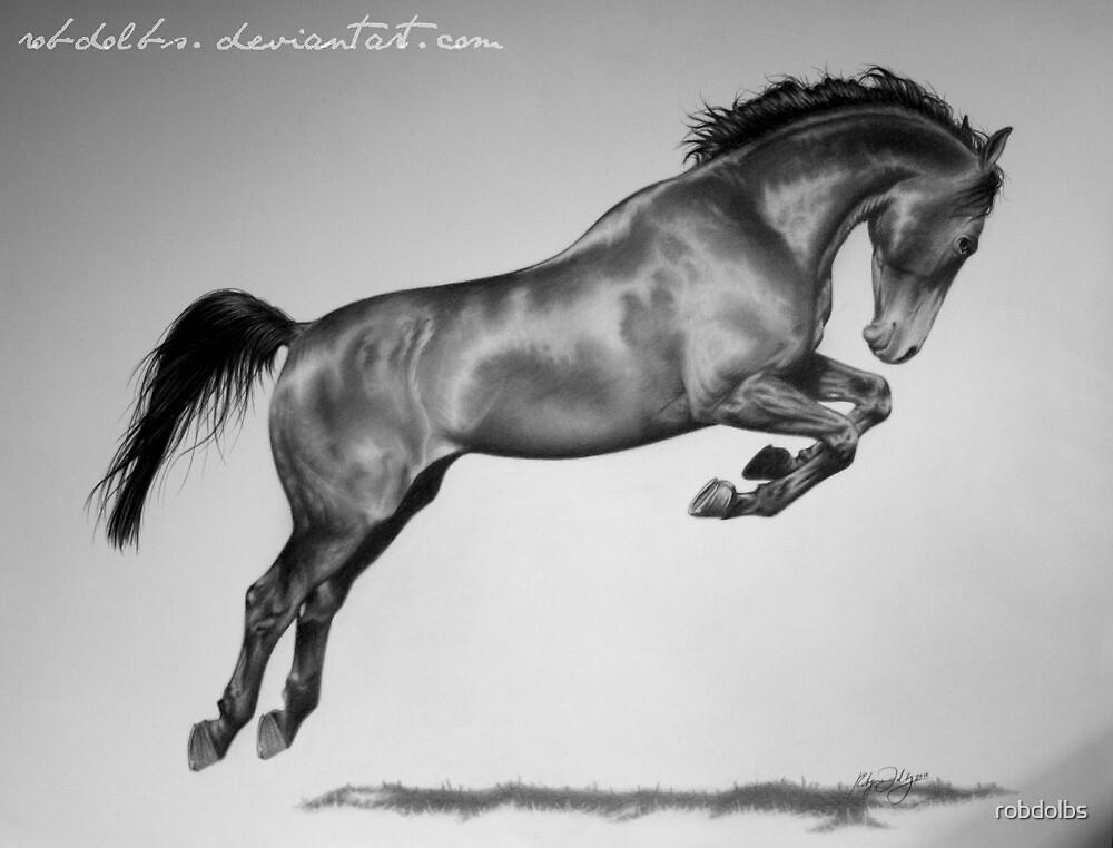 Jumping Horse by robdolbs