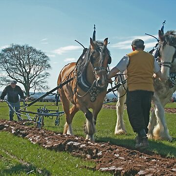 Ploughing match by orcadia