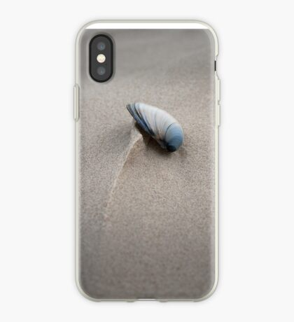 Shell at Cloudy Bay, Bruny Island iPhone Case