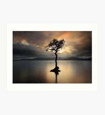 Lone tree on Loch Lomond Art Print