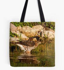 Coopers Hawk Tote Bag