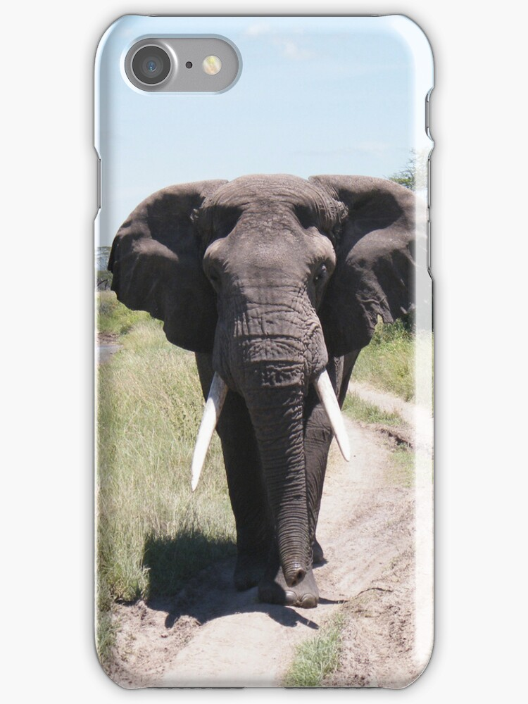 Bull Elephant Case by Laura Kelk