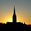 Salisbury Cathedral at sunset for iPhone by Philip Mitchell