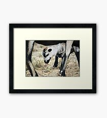 Always protected by Mom Framed Print